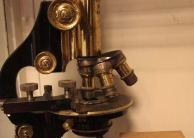 AugustHerlofWestra_GP_Microscope_MaaikePlomp_2012